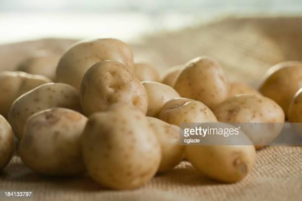 Fresh Ripe White Potatoes