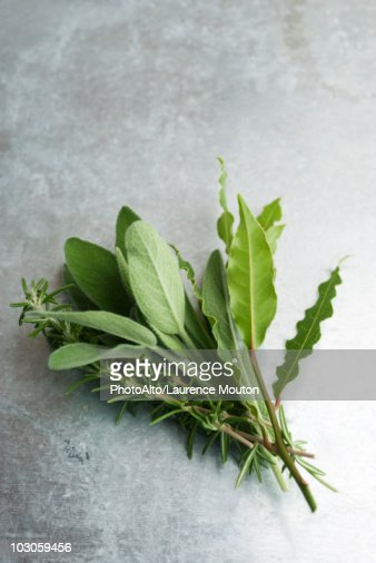 Fresh sage, rosemary, and bay leaves