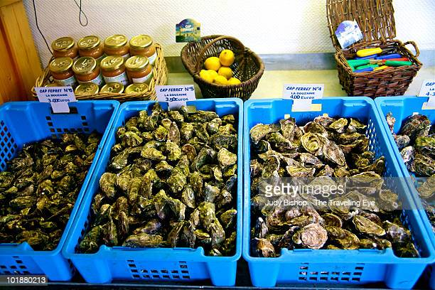 Fresh sales at French oyster producer's hut