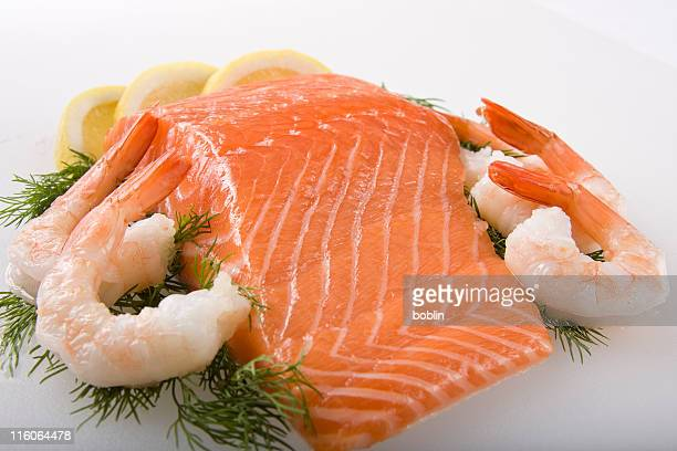 Fresh  Salmon and Shrimp
