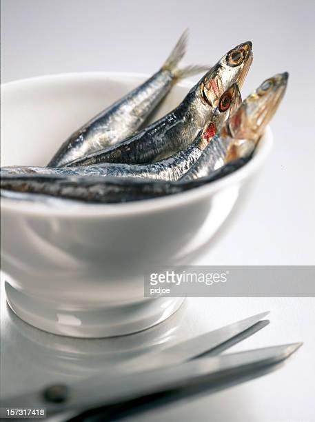 Sardine fresca in ciotola