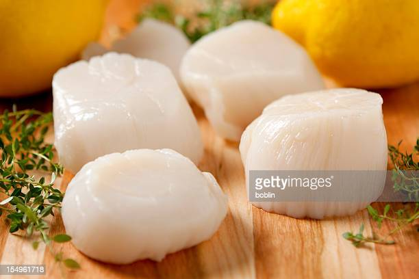 how to clean fresh scallops