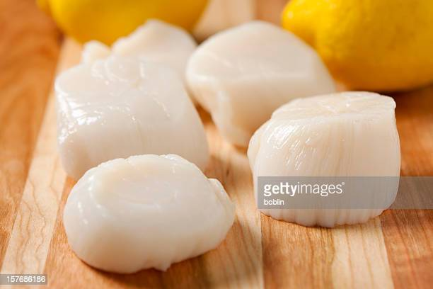 Fresh sea scallops with lemons in the background