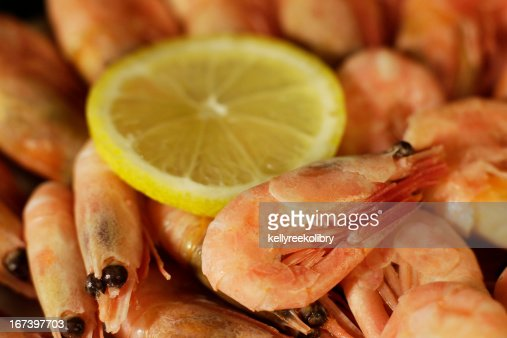Fresh shrimp : Stockfoto