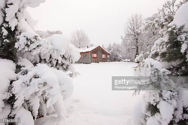 Fresh snow on trees and log cabin, New Zealand