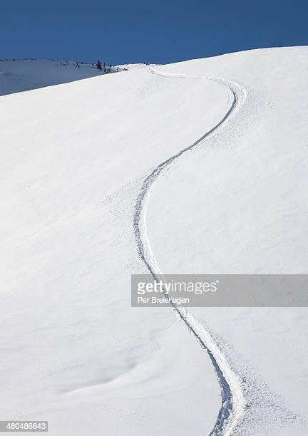 Fresh snowboard tracks in powder