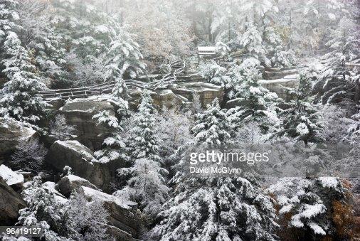 Fresh snowfall on hillside : Stock Photo