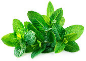 "Fresh spearmint leaves isolated on the white background. Mint, peppermint close up""n"