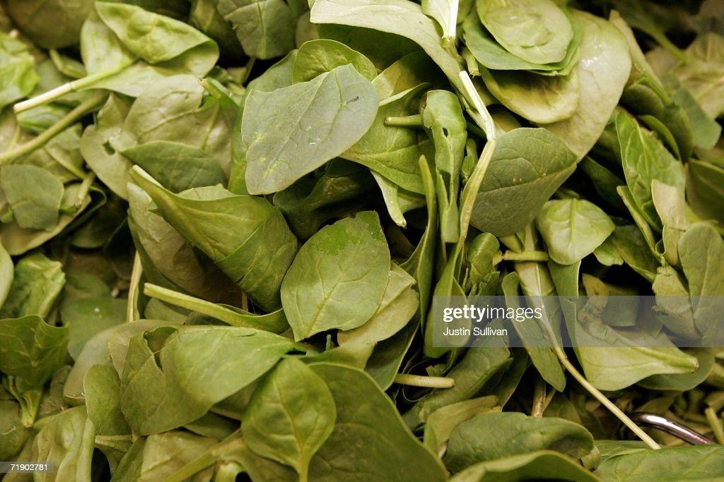 Natural Selection Foods San Juan Bautista
