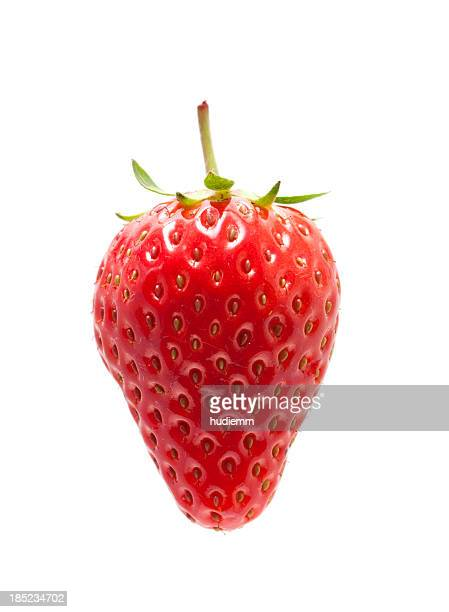 Frische Erdbeer Isoliert