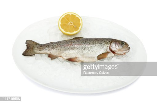 Fresh trout on ice with lemon. : Stock Photo