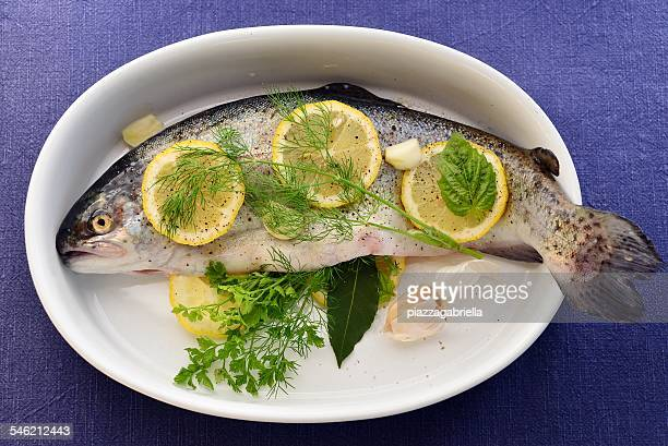 Fresh trout with lemon and herbs