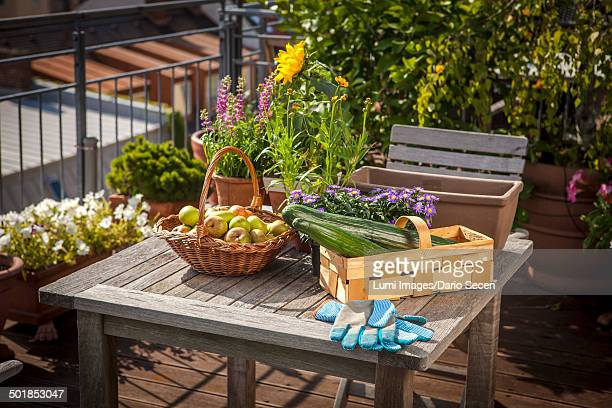 Fresh Vegetable and Fruits On Balcony, Munich, Bavaria, Germany, Europe