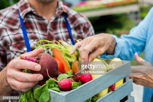 Fresh vegetables being sold at farmers market
