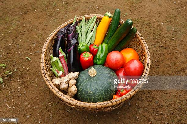 Fresh vegetables in basket, close-up, high angle view