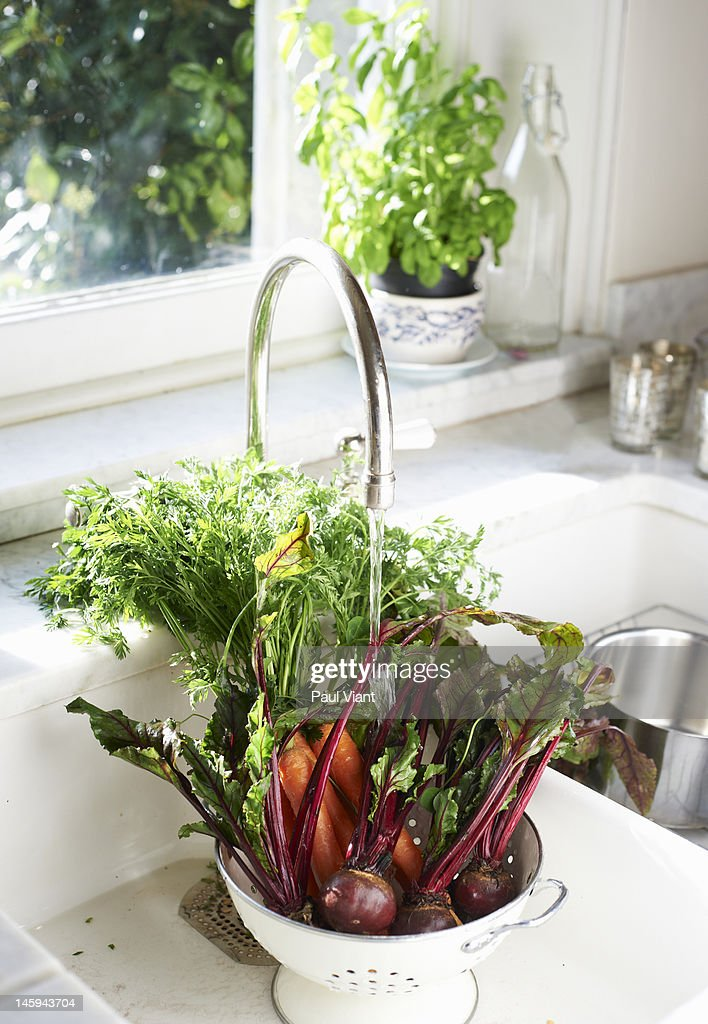 fresh vegetables in sink : Stock Photo