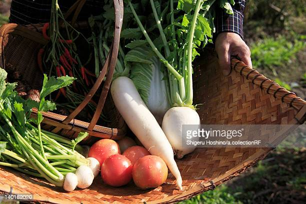 Fresh Vegetables on Bamboo Basket