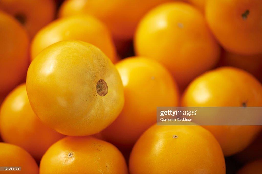 Fresh yellow tomatoes