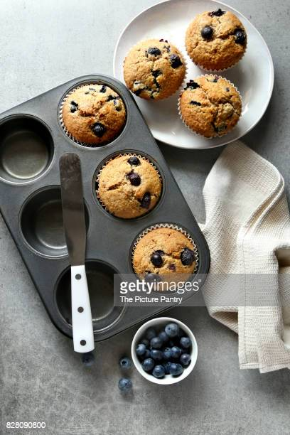 Freshly baked blueberry muffins on a baking pan.Top view