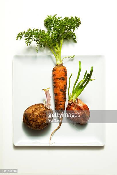 freshly carrot& sprout  onion&potato on plate