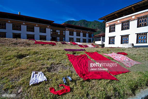 Freshly cleaned red Buddhist monk robes lying on the grass to dry in the sun.