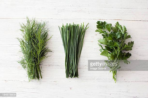 Freshly cut dill, chives and flat leaf parsley