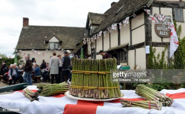 Freshly cut rounds of asparagus are tied as people celebrate St George's Day and the official start of the asparagus season at the The Fleece Inn in...