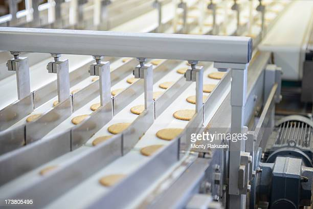 Freshly made biscuits on production line in food factory