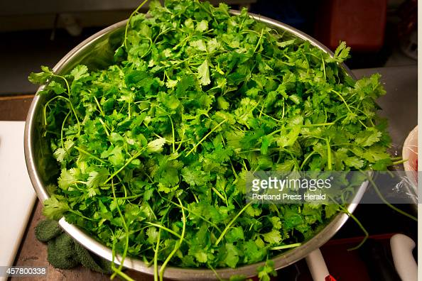 Freshly picked cilantro sits in a bowl before Dyanna Lincoln of South Road Farm in Fayette uses it to make spicy cilantro pesto at the Grange Hall in...
