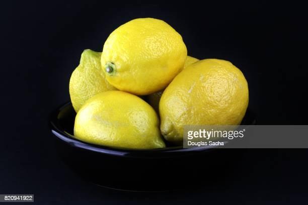 Freshly picked Lemon fruits on a black background (Citrus × limon)