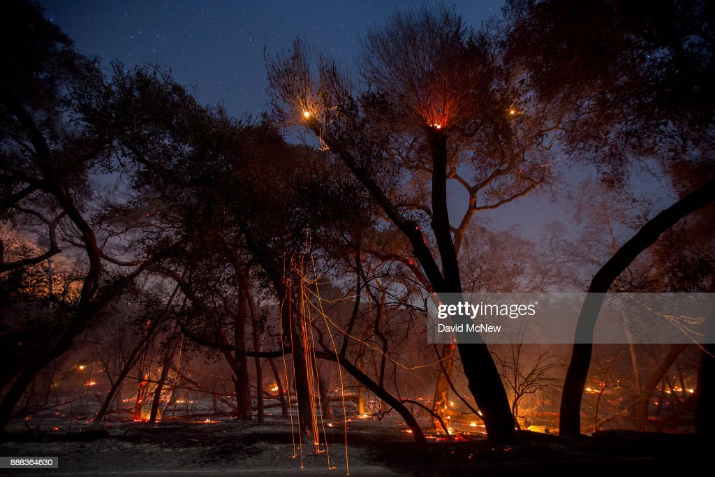 A freshly-burned forest is seen under the stars at the Lilac Fire in the early morning hours of December 8, 2017 near Bonsall, California. Strong Santa Ana winds are pushing multiple wildfires across the region, expanding across tens of thousands of acres and destroying hundreds of homes and structures.