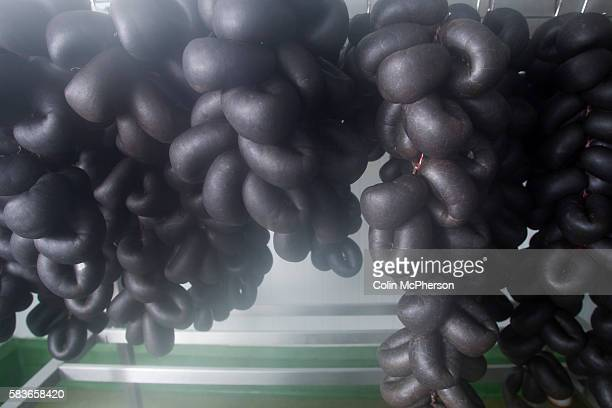 Freshlymade traditional Bury black pudding drying at R S Ireland's premises at Haslingden Lancashire England which the company is taking to the...
