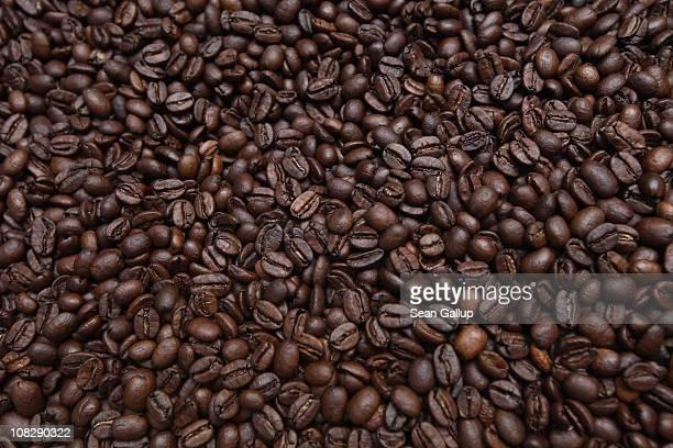 Freshlyroasted espresso coffee beans cool in a refurbished 1918 Probat coffee bean roaster at Bonanza Coffee Roasters on January 24 2011 in Berlin...