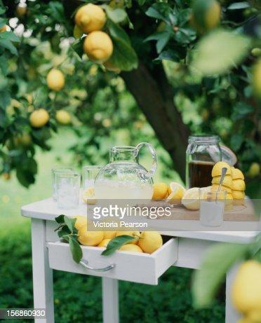 Freshly-squeezed lemonade.