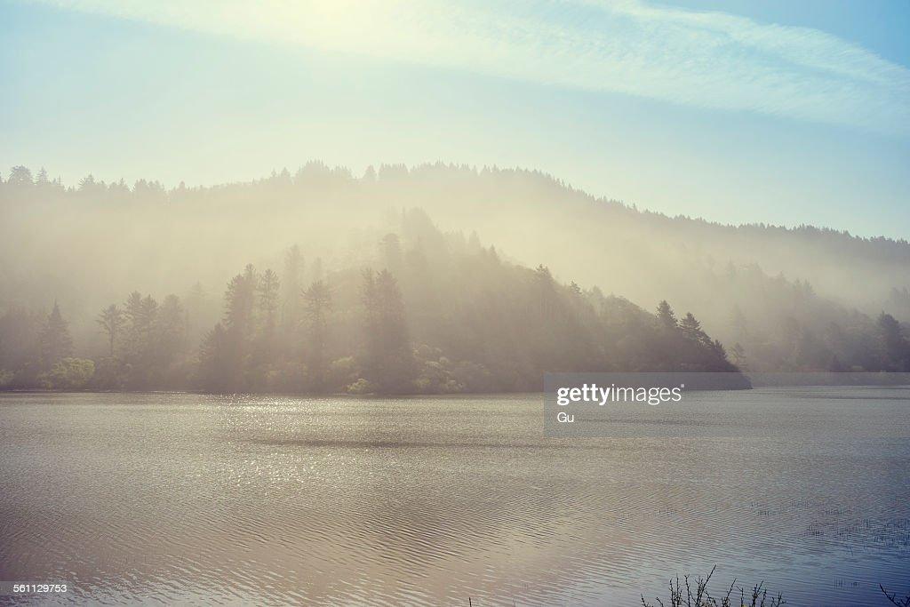 Freshwater lagoon, Trinidad, California, USA