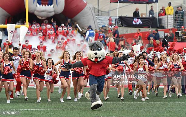 Fresno State Mascot Timeout leads the team on to the field to start the game between the Fresno State Bulldogs and the Hawaii Rainbow Warriors on...
