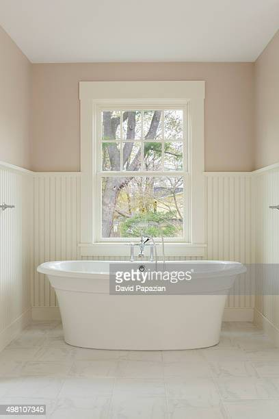 Frestanding tub with picture window background