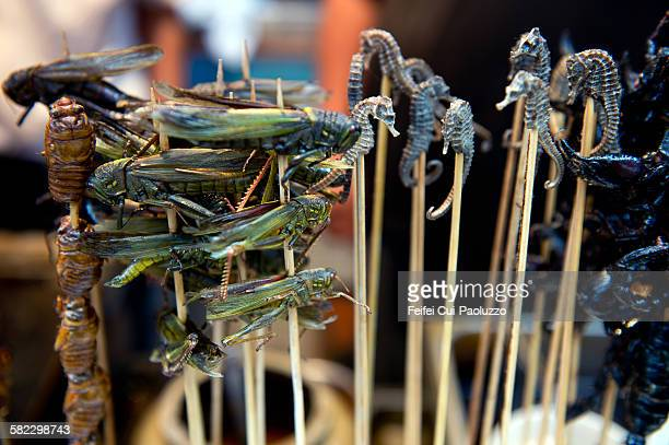 Fried Grasshopper and Seahorse skewers at Beijing