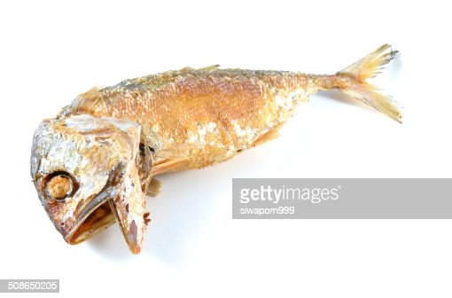 Fried Mackerel fish close up : Stock Photo