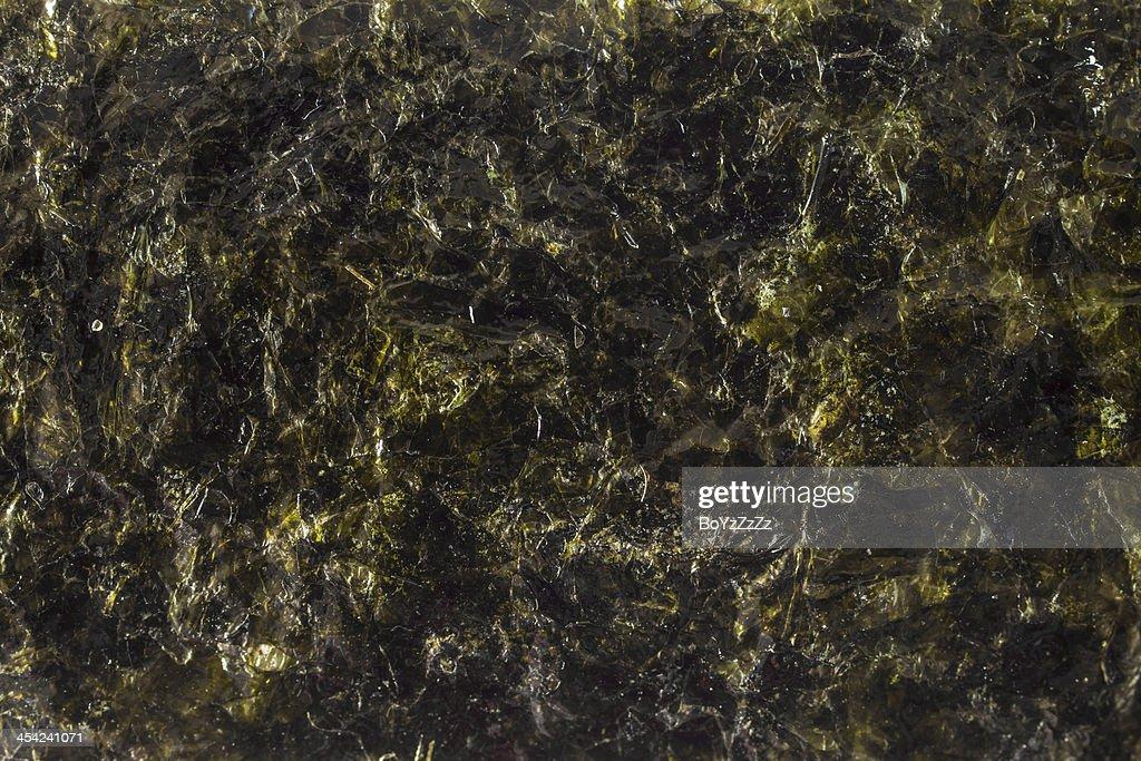 Fried Seaweed Textured : Stock Photo