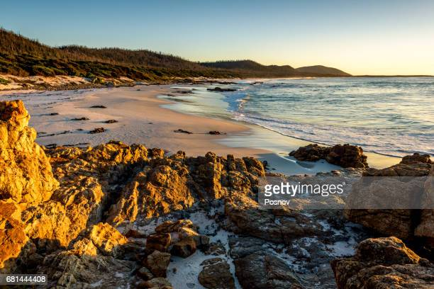 Friendly Beaches at Freycinet National Park