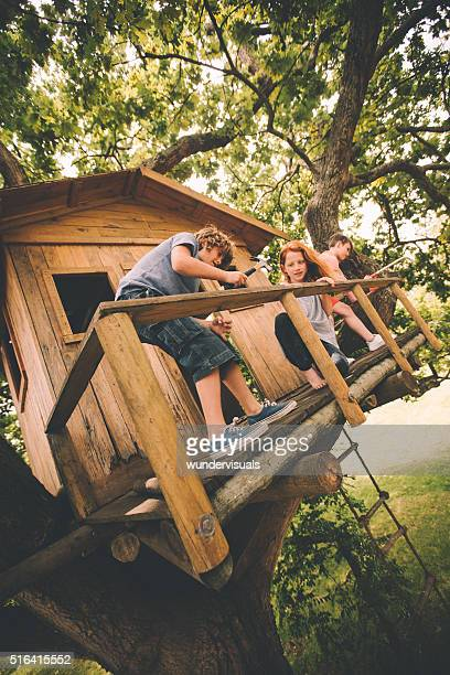 Friends building a treehouse together on a summer day