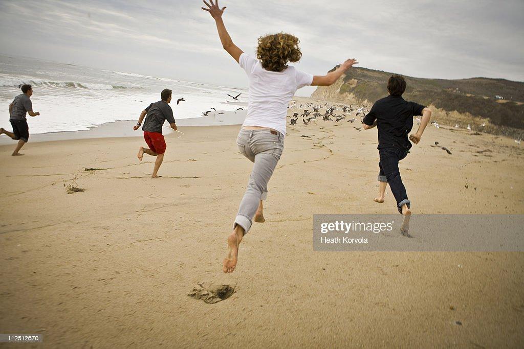 Friends chasing seagulls on open beach. : Stock Photo