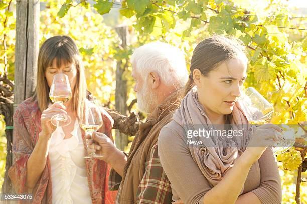 Amici bere vino bianco in vigneto