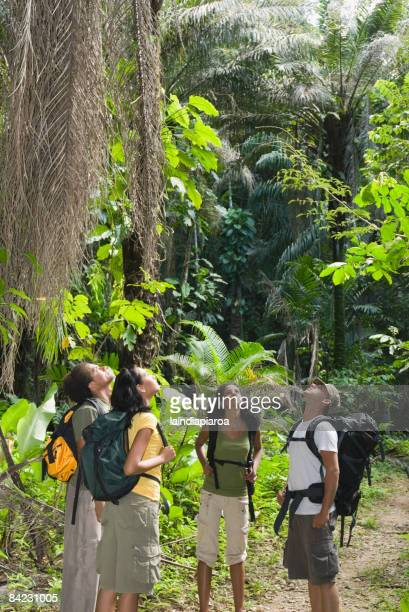 Friends in backpacks exploring jungle