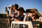 Friends looking through binoculars during safari vacation on a sunny day