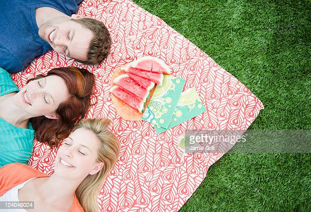 Friends relaxing at picnic