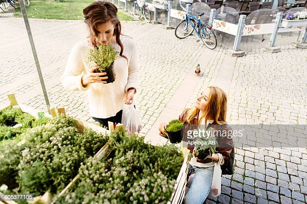 Friends smelling and choosing plants in stall at market