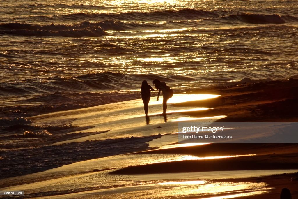 Friends standing on the sunset beach in Kamakura city in Kanagawa prefecture in Japan : ストックフォト