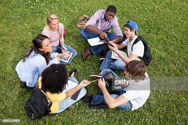 Friends studying on grass